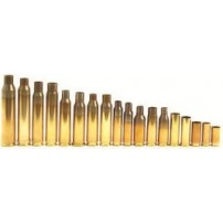 Bossoli Remington cal. 300 Winchester Magnum
